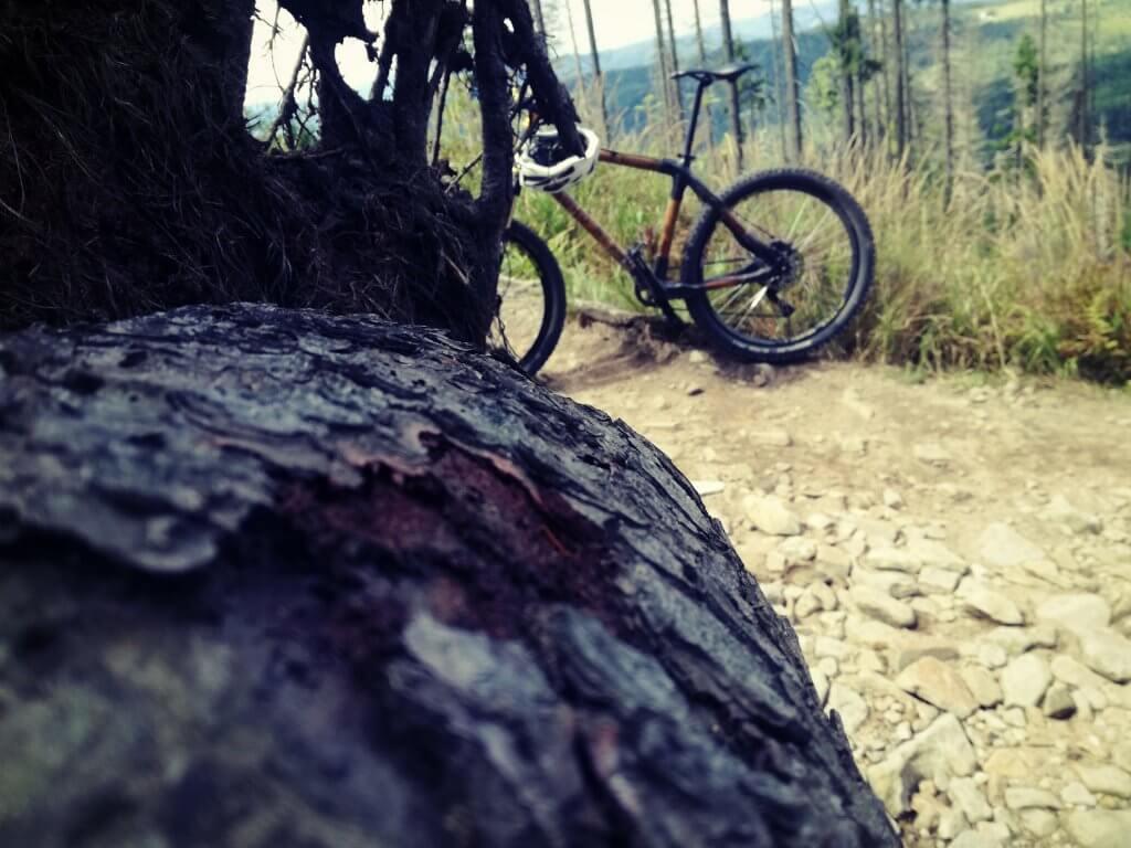 Z Brennej na Baranią Górę zwalone drzewo i rower