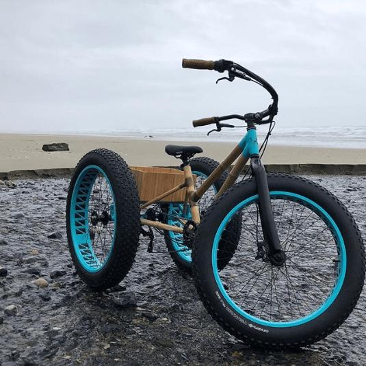 Najdziwniejsze rowery z bambusa trike