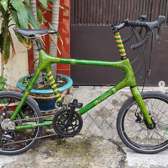 Najdziwniejsze rowery z bambusa zielony
