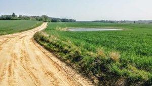 Z rowerem na Mazury łąki